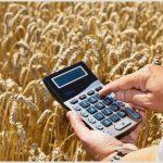 Кредитование Россельхозбанком сезонных полевых работ